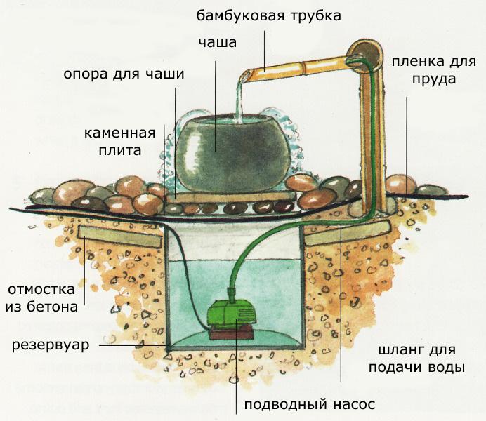 http://www.tsvetnik.info/images/jap_77.jpg