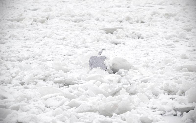 Саженцы на зиму