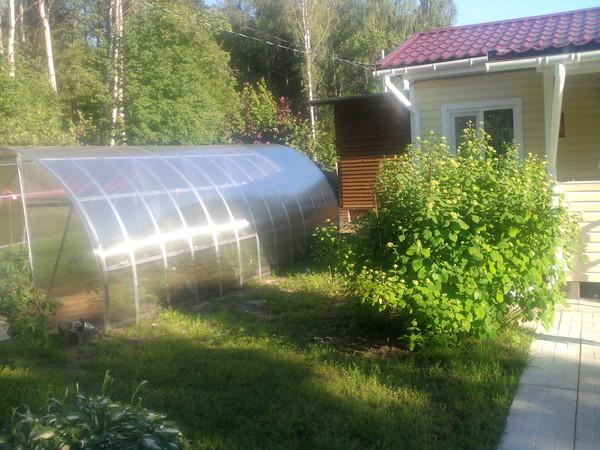 Крыши гидроизоляция покрытие