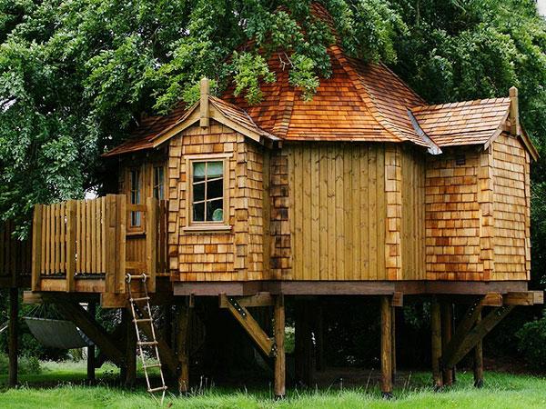 Дома на деревьях фотогалерея